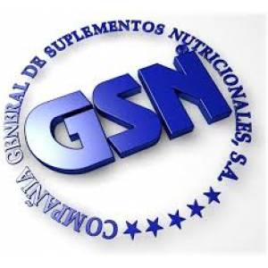logo gsn